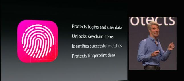 Touch ID:PayPal lo esplora per un futuro sviluppo