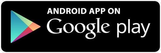 Risultati immagini per store android