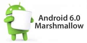6.0 Marshmallow